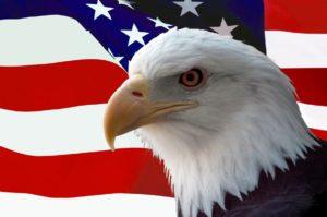 American Bald Eagle on Flag, Arizona, health insurance, group health insurance, Gilbert, Good Neighbor Insurance, www.gninsurance.com