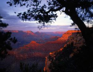 Enjoy the Grand Canyon