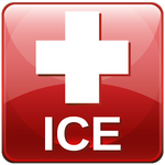 ICE-standard