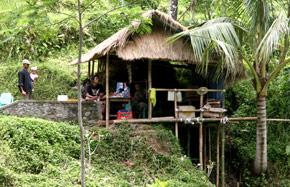 green-hut