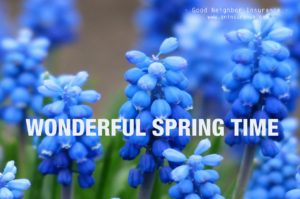 Welcome to Spring Season from GNI!