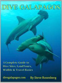 Dive_Galapagos