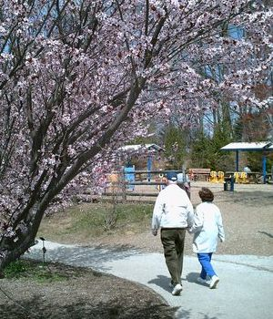 spring-walk