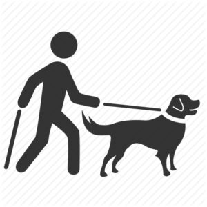 Blind travel seeing eye dog